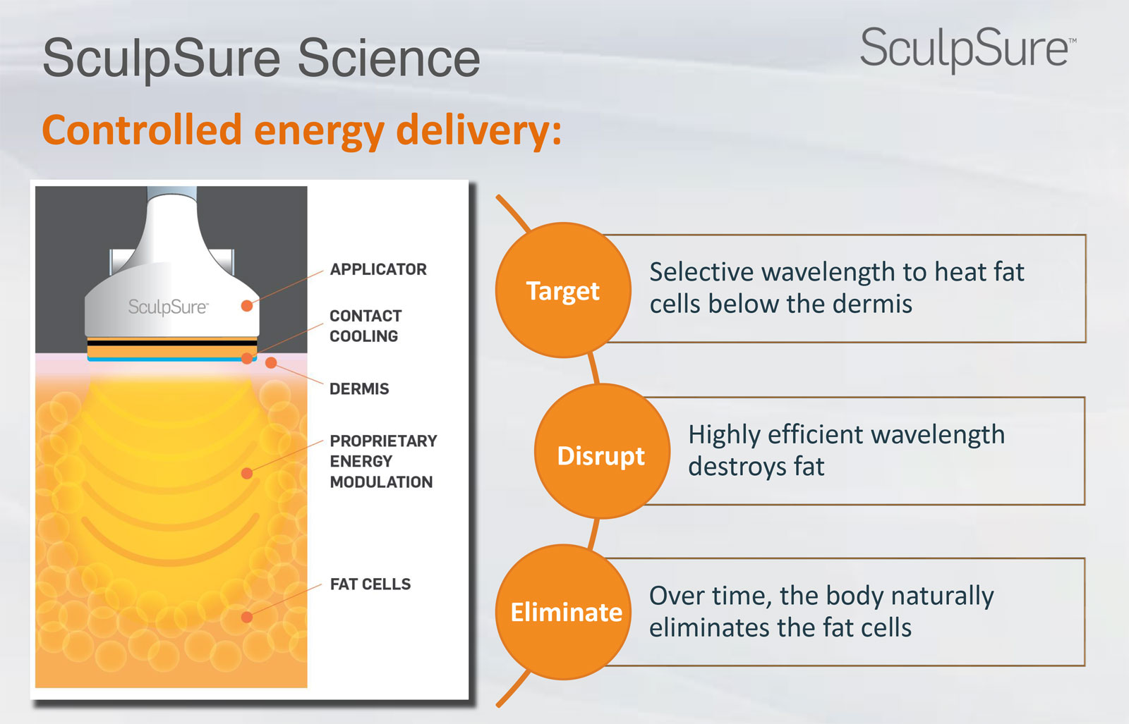 SculpSure Science - How SculpSure Works